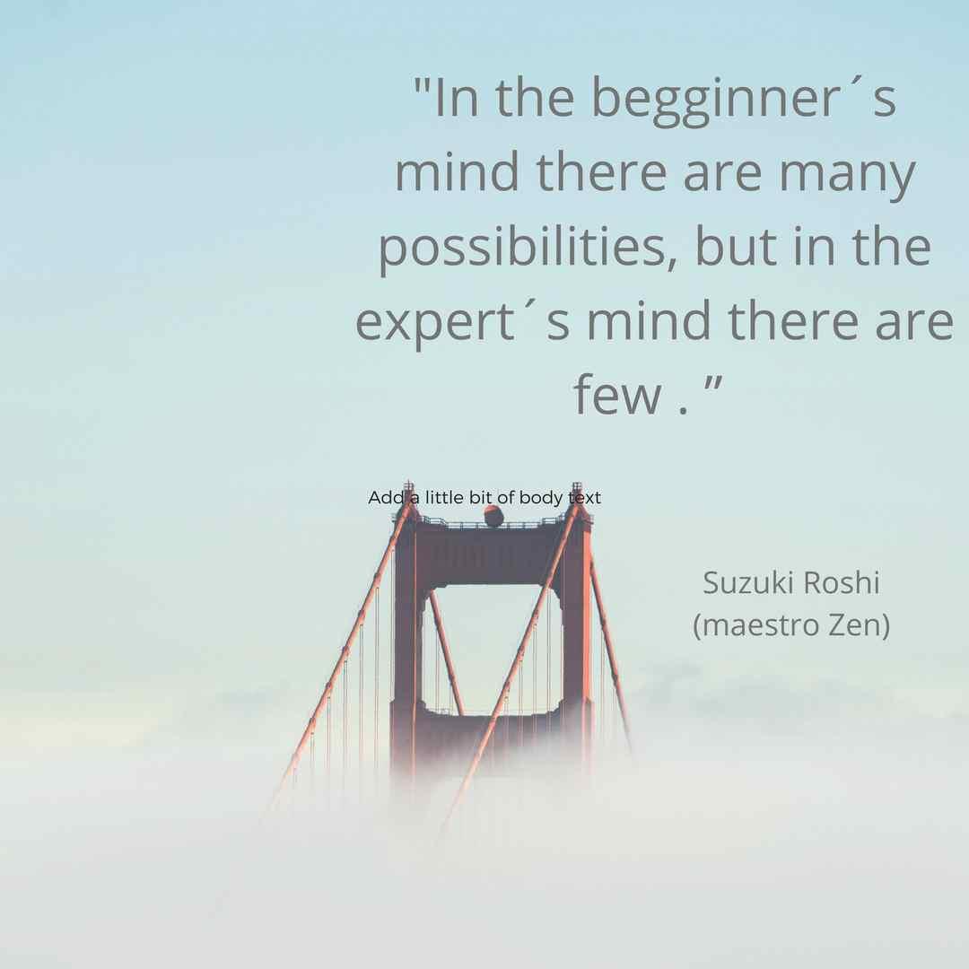 Expert's mind